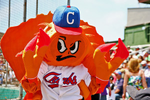 Photo of Crabby of the Humboldt Crabs Baseball Team